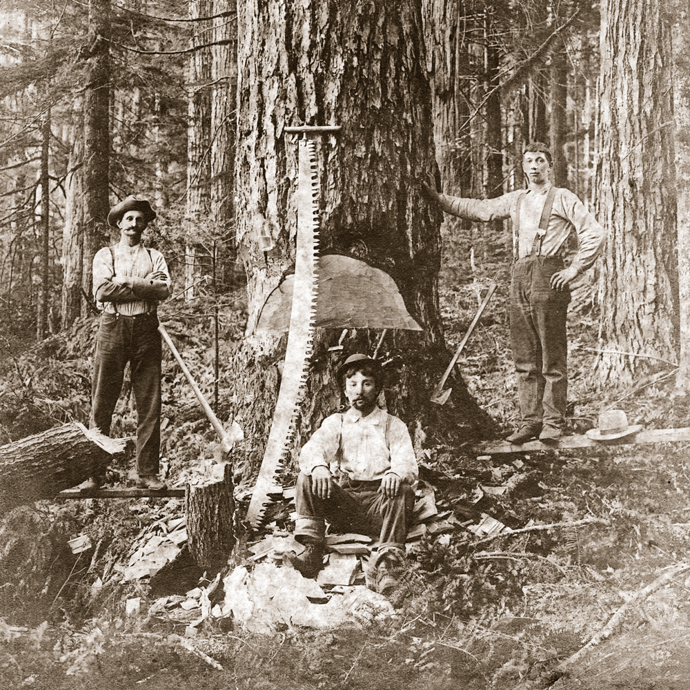 History of Logging