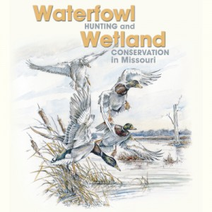 Waterfowl Hunting and Wetland Conservation in Missouri: A Model of Collaboration